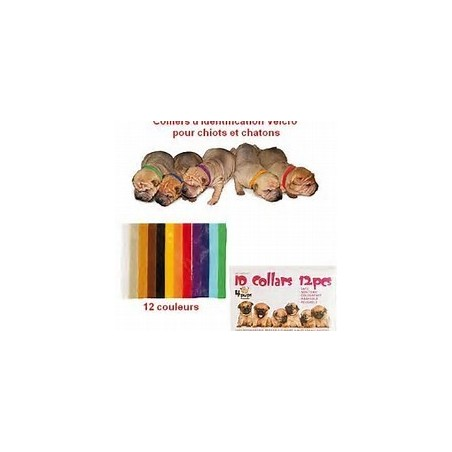 Colliers d'Identification PUPCOLORS