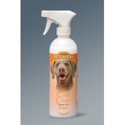 Coat Polish  BIO-GROOM