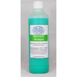 Protein Shampoo Spécial Master