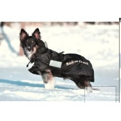 Manteau Chien Standard BACK ON TRACK